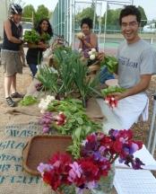 New urban farm at Van Tech high school