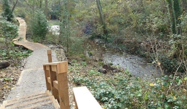 The boardwalk runs along Still Creek.